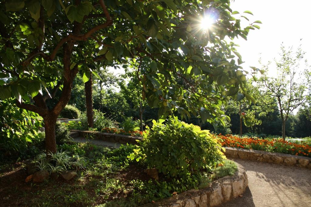 Apartments Basan Lovran-Opatija, holiday home in Kvarner garden view
